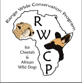 guepard-cheetah-conservation-protection